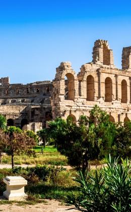 Visite de sites majeurs, tels que Dougga, Carthage et l'amphithéâtre d'El Jem