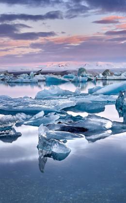 Le lac glaciaire de Jokulsarlon et ses icebergs