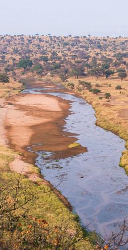 Safari en 4x4 : Tarangire, Manyara et N'Gorongoro