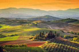ITALIE: Circuit vinicole Toscane et Vénétie