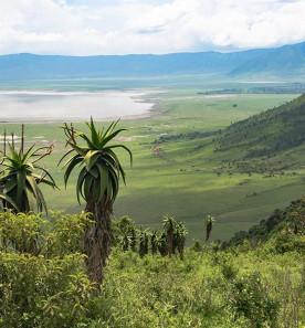 Incontournable Tanzanie