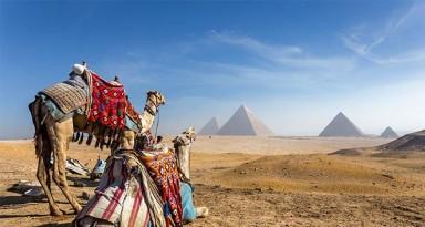 L'Égypte et ses incontournables